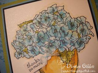 Dianas-marina-mist-card