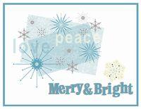 2010-bluewhite snowflake-001
